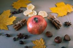 Czerwonego garnet owocowy odgórny widok na stole życie ciągle jesieni Fotografia Stock