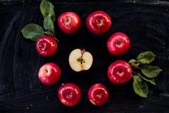 Czerwonego jabłczanego dżemu składnika odgórny widok zdjęcie royalty free