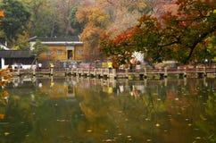 Czerwonego klonu festiwal Tianpinghill przy Suzhou, Chiny Fotografia Stock