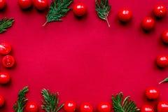 Czerwonego koloru set z karmowym odgórnego widoku egzaminem próbnym up Obrazy Royalty Free