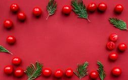 Czerwonego koloru set z karmowym odgórnego widoku egzaminem próbnym up Zdjęcie Stock