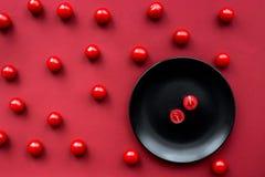 Czerwonego koloru set z karmowym odgórnego widoku wzorem Zdjęcie Royalty Free