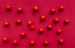 Czerwonego koloru set z karmowym odgórnego widoku wzorem Obraz Stock