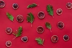Czerwonego koloru set z rżniętym owocowym odgórnego widoku wzorem Zdjęcia Royalty Free
