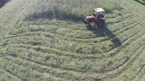 Czerwonego małego retro ciągnika rżnięta haying trawa od lato końcówki łąki, widok z lotu ptaka zbiory