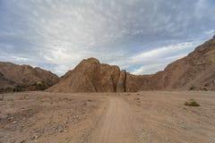 Czerwonego morza góry Fotografia Royalty Free