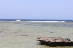 Czerwonego morza plaży Czerwony morze Egipt Zdjęcia Stock