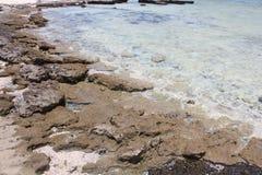 Czerwonego morza plaży Czerwony morze Egipt Obraz Royalty Free
