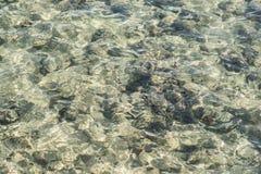 Czerwonego morza tło tła koloru ilustraci wzoru bezszwowa wektoru woda turkusowy kolor woda Obraz Royalty Free