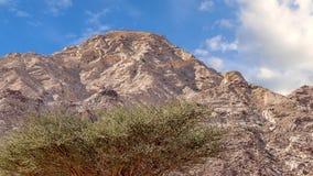 Czerwonego piaska Arabska pustynia blisko Dubaj Fotografia Stock