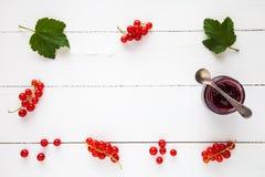Czerwonego rodzynku dżem i świeże redcurrant jagody jak granicę Zdjęcia Stock