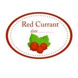 Czerwonego rodzynku etykietki wektorowy projekt odizolowywający na białym tle zdjęcie royalty free