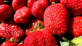 Czerwonego świeżego soku sping truskawka obraz royalty free