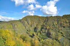 Czerwonego Wina Footpath, Ahr dolina, Niemcy Fotografia Royalty Free