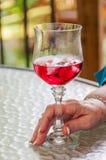 Czerwonego wina i trzonu szkło Zdjęcie Royalty Free