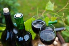 Czerwonego wina pojęcie Fotografia Royalty Free