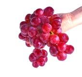 Czerwonego winogrona owoc odizolowywa na bia?ym tle zdjęcia royalty free