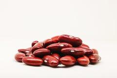 Czerwonej fasoli lub czerwień cynaderki fasola na białym tle zdjęcie royalty free