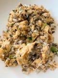 Czerwonej mrówki omletu jajeczny tło zdjęcie royalty free