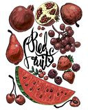 czerwonej 2 owoc ilustracja wektor