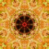 Czerwonej pandy abstrakt 4 Zdjęcia Stock
