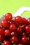 Czerwoni agresty kosze, owoc tło Obrazy Royalty Free