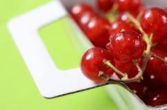 Czerwoni agresty kosze, owoc tło Zdjęcie Royalty Free