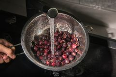 Czerwoni agresty myjący w colander Zdjęcia Stock