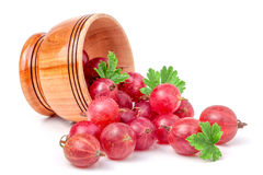 Czerwoni agresty rozlewają z drewnianego pucharu odizolowywającego na bielu Zdjęcia Stock