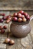 Czerwoni agresty w ceramicznym pucharze Zdjęcia Stock
