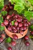 Czerwoni agresty w drewnianym pucharze Zdjęcie Stock