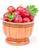 Czerwoni agresty z liściem w drewnianym pucharze odizolowywającym na bielu Obrazy Royalty Free