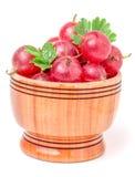 Czerwoni agresty z liściem w drewnianym pucharze odizolowywającym na bielu Zdjęcia Royalty Free