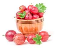 Czerwoni agresty z liściem w drewnianym pucharze odizolowywającym na bielu Obrazy Stock