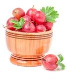 Czerwoni agresty z liściem w drewnianym pucharze odizolowywającym na bielu Fotografia Royalty Free