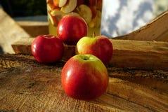 Czerwoni Amasya jabłka Turcja i pożarniczy drewna obraz stock