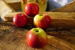 Czerwoni Amasya jabłka Turcja i pożarniczy drewna fotografia stock