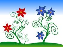 czerwoni błękitny kwiaty Zdjęcia Stock