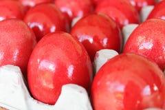czerwoni barwioni jajka obraz stock