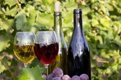 czerwoni biały wina Fotografia Stock