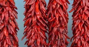 Czerwoni chilis Obrazy Stock