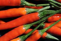 Czerwoni chillies Fotografia Stock