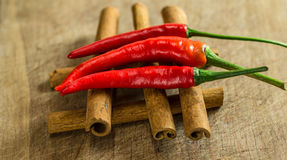 Czerwoni chillies na cynamonowych kijach Obraz Stock