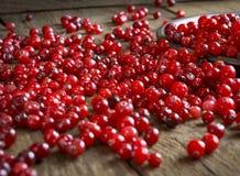 Czerwoni cranberries na drewnianym stole Obrazy Stock