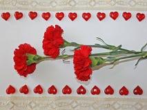 Czerwoni goździki na białym tle Zdjęcia Stock