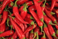 czerwoni gorący chili pieprze Obrazy Stock