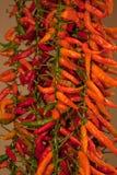 czerwoni gorący chili pieprze Zdjęcia Stock