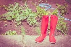 Czerwoni gumowi buty w ogródzie Fotografia Royalty Free