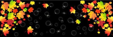 Czerwoni i żółci jesień liście na czarnym tle Jesienny abstrakcjonistyczny tło, panorama ilustracji