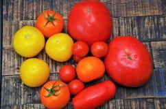 Czerwoni i żółci pomidory Obrazy Royalty Free